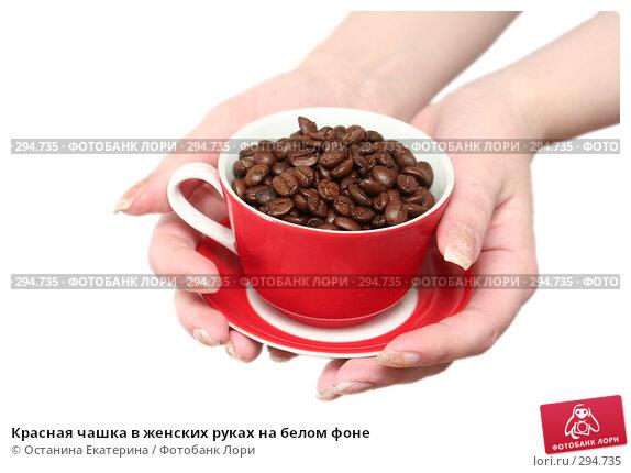 Купить «Красная чашка в женских руках на белом фоне», фото № 294735, снято 8 декабря 2007 г. (c) Останина Екатерина / Фотобанк Лори