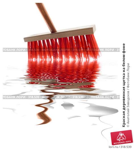Купить «Красная деревянная щетка на белом фоне», фото № 318539, снято 14 апреля 2007 г. (c) Анатолий Заводсков / Фотобанк Лори