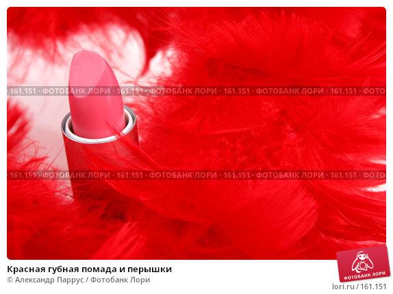 Красная губная помада и перышки, фото № 161151, снято 25 июня 2007 г. (c) Александр Паррус / Фотобанк Лори