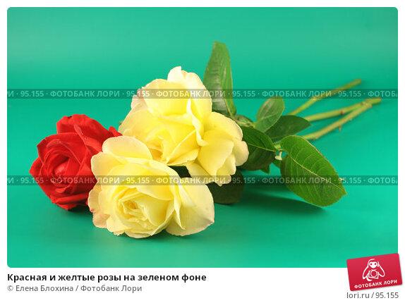 Красная и желтые розы на зеленом фоне, фото № 95155, снято 25 сентября 2007 г. (c) Елена Блохина / Фотобанк Лори
