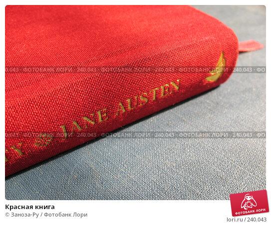 Купить «Красная книга», фото № 240043, снято 31 марта 2008 г. (c) Заноза-Ру / Фотобанк Лори