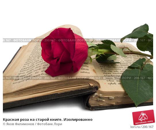 Красная роза на старой книге. Изолированно, фото № 200167, снято 8 февраля 2008 г. (c) Яков Филимонов / Фотобанк Лори