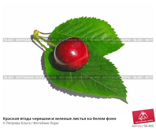 Красная ягода черешни и зеленые листья на белом фоне, фото № 56403, снято 25 июня 2007 г. (c) Петрова Ольга / Фотобанк Лори