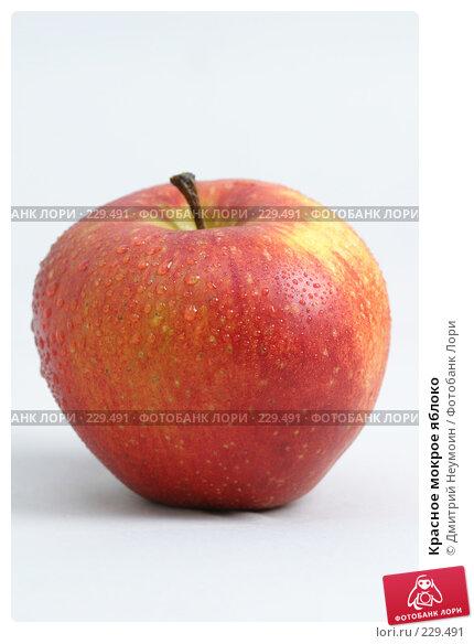 Красное мокрое яблоко, эксклюзивное фото № 229491, снято 26 марта 2017 г. (c) Дмитрий Неумоин / Фотобанк Лори