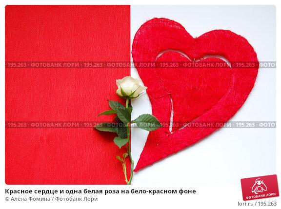 Купить «Красное сердце и одна белая роза на бело-красном фоне», фото № 195263, снято 5 февраля 2008 г. (c) Алёна Фомина / Фотобанк Лори
