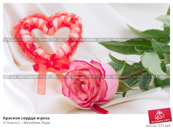 Красное сердце и роза, фото № 171223, снято 27 июня 2017 г. (c) Ольга С. / Фотобанк Лори