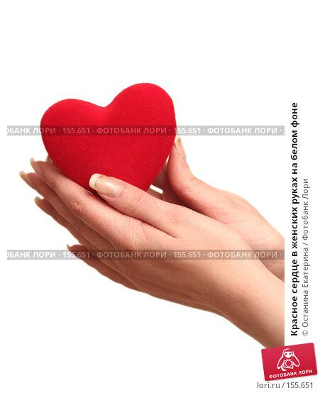 Купить «Красное сердце в женских руках на белом фоне», фото № 155651, снято 5 декабря 2007 г. (c) Останина Екатерина / Фотобанк Лори
