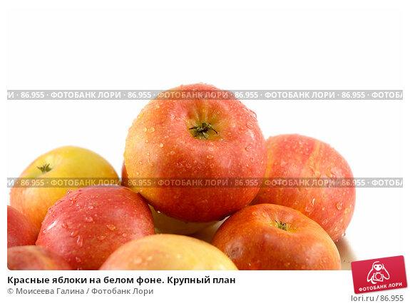 Красные яблоки на белом фоне. Крупный план, фото № 86955, снято 16 сентября 2007 г. (c) Моисеева Галина / Фотобанк Лори