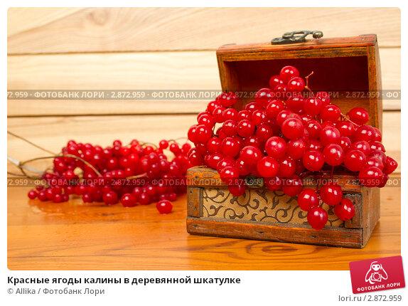 Купить «Красные ягоды калины в деревянной шкатулке», фото № 2872959, снято 24 апреля 2019 г. (c) Allika / Фотобанк Лори