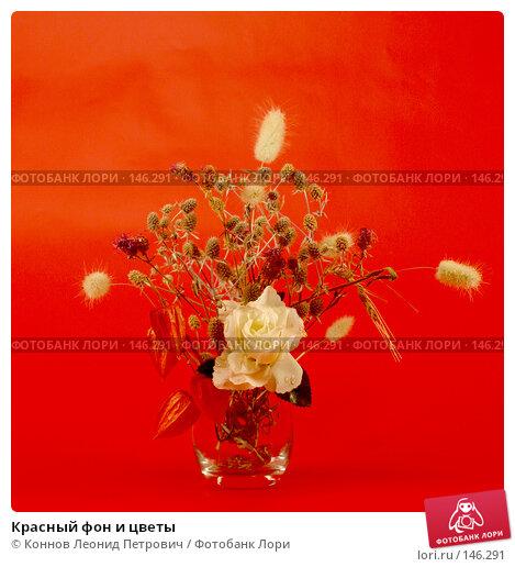 Красный фон и цветы, фото № 146291, снято 13 декабря 2007 г. (c) Коннов Леонид Петрович / Фотобанк Лори