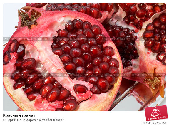 Красный гранат, фото № 289187, снято 6 мая 2008 г. (c) Юрий Пономарёв / Фотобанк Лори