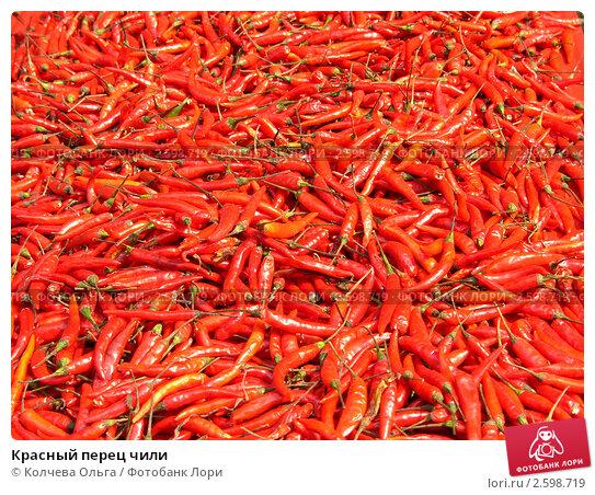 Купить «Красный перец чили», фото № 2598719, снято 1 марта 2011 г. (c) Колчева Ольга / Фотобанк Лори