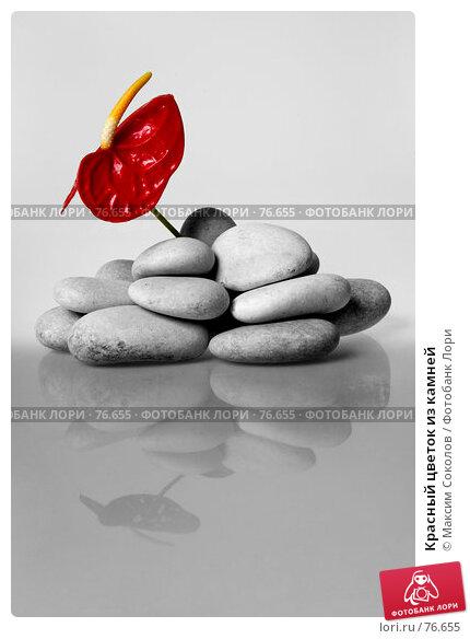 Красный цветок из камней, фото № 76655, снято 8 июля 2007 г. (c) Максим Соколов / Фотобанк Лори
