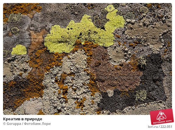Креатив в природе, фото № 222051, снято 29 июля 2007 г. (c) Goruppa / Фотобанк Лори