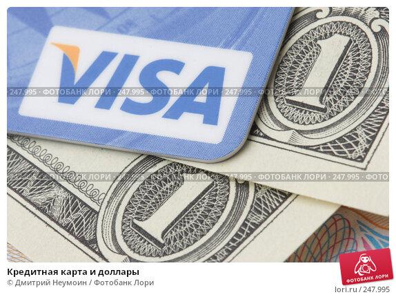 Купить «Кредитная карта и доллары», эксклюзивное фото № 247995, снято 8 апреля 2008 г. (c) Дмитрий Неумоин / Фотобанк Лори