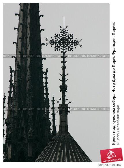 Крест над куполом собора Нотр Дам де Пари. Франция, Париж, фото № 101487, снято 22 февраля 2006 г. (c) Harry / Фотобанк Лори