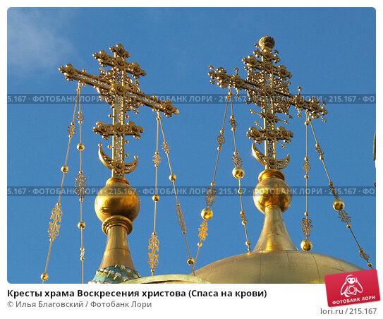 Кресты храма Воскресения христова (Спаса на крови), фото № 215167, снято 21 октября 2007 г. (c) Илья Благовский / Фотобанк Лори