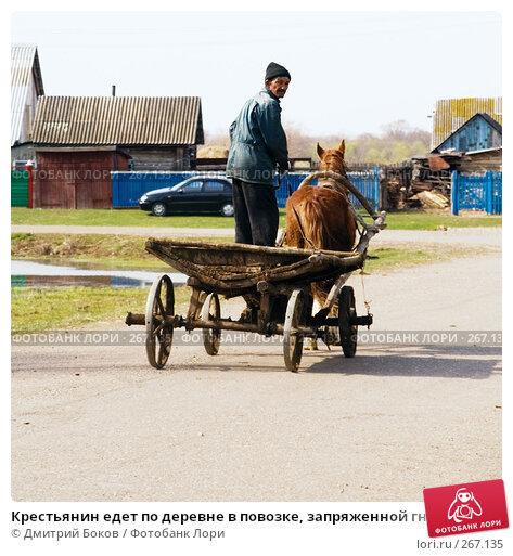 Крестьянин едет по деревне в повозке, запряженной гнедой лошадью, фото № 267135, снято 20 апреля 2008 г. (c) Дмитрий Боков / Фотобанк Лори