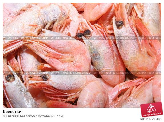 Креветки, фото № 21443, снято 3 марта 2007 г. (c) Евгений Батраков / Фотобанк Лори