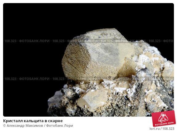 Кристалл кальцита в скарне, фото № 108323, снято 25 ноября 2006 г. (c) Александр Максимов / Фотобанк Лори
