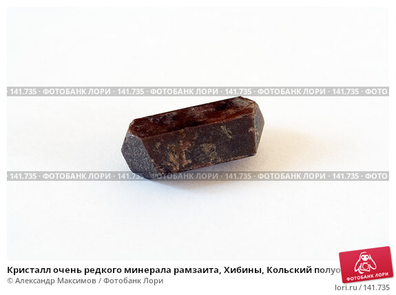 Купить «Кристалл очень редкого минерала рамзаита, Хибины, Кольский полуостров», фото № 141735, снято 23 марта 2006 г. (c) Александр Максимов / Фотобанк Лори