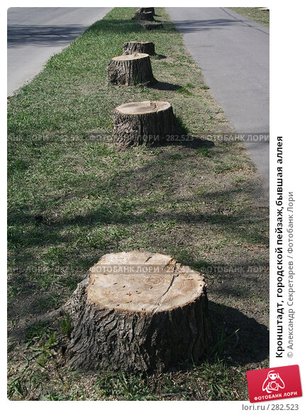 Купить «Кронштадт, городской пейзаж,бывшая аллея», фото № 282523, снято 3 мая 2008 г. (c) Александр Секретарев / Фотобанк Лори
