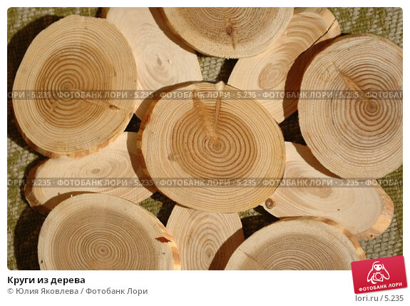 Круги из дерева, фото № 5235, снято 4 июля 2006 г. (c) Юлия Яковлева / Фотобанк Лори