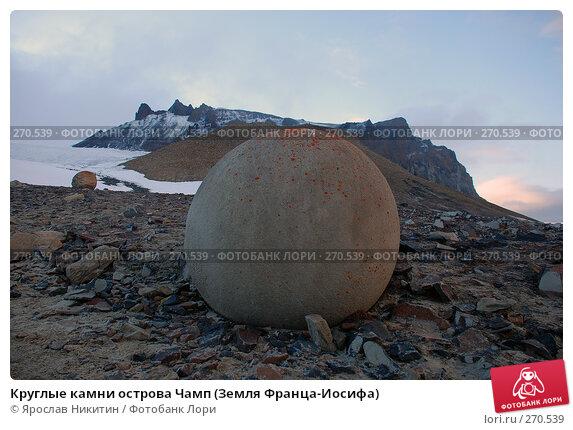 Круглые камни острова Чамп (Земля Франца-Иосифа), фото № 270539, снято 13 августа 2007 г. (c) Ярослав Никитин / Фотобанк Лори
