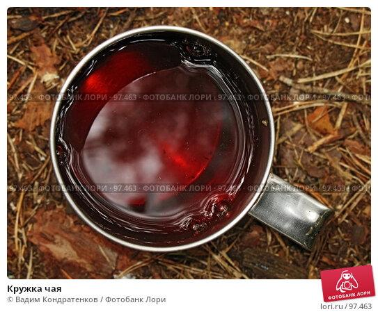 Кружка чая, фото № 97463, снято 8 декабря 2016 г. (c) Вадим Кондратенков / Фотобанк Лори