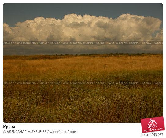Крым, фото № 43987, снято 18 июля 2006 г. (c) АЛЕКСАНДР МИХЕИЧЕВ / Фотобанк Лори