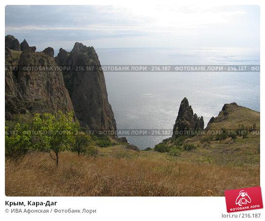 Купить «Крым, Кара-Даг», фото № 216187, снято 13 сентября 2006 г. (c) ИВА Афонская / Фотобанк Лори