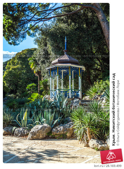Купить «Крым. Никитский ботанический сад», фото № 28169499, снято 24 сентября 2017 г. (c) Ольга Сейфутдинова / Фотобанк Лори