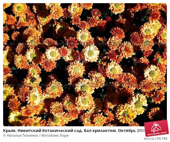 Крым. Никитский ботанический сад. Бал хризантем. Октябрь 2006 года, фото № 93743, снято 28 марта 2017 г. (c) Наталья Ткаченко / Фотобанк Лори