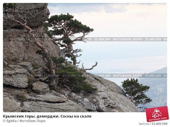 Купить «Крымские горы. демерджи. Сосны на скале», фото № 33409599, снято 23 октября 2018 г. (c) EgleKa / Фотобанк Лори