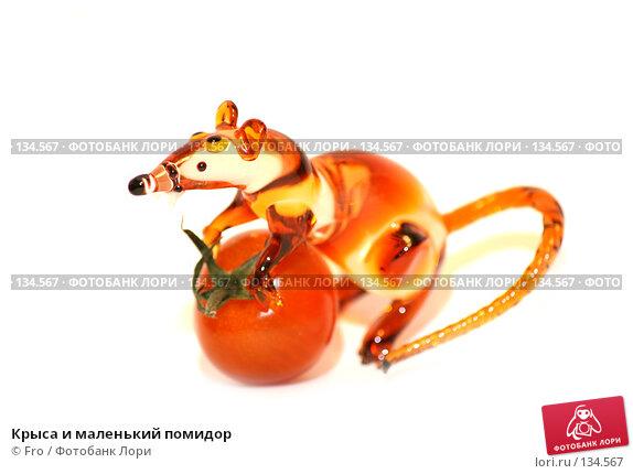 Крыса и маленький помидор, фото № 134567, снято 30 ноября 2007 г. (c) Fro / Фотобанк Лори