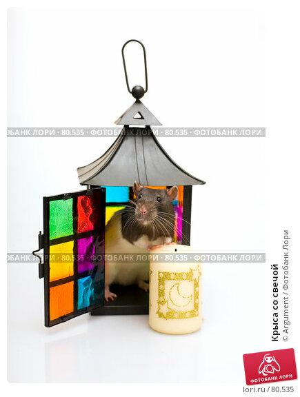 Крыса со свечой, фото № 80535, снято 2 сентября 2007 г. (c) Argument / Фотобанк Лори