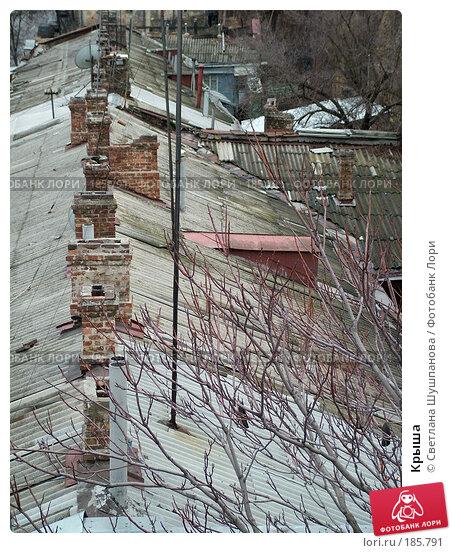 Крыша, фото № 185791, снято 10 января 2006 г. (c) Светлана Шушпанова / Фотобанк Лори