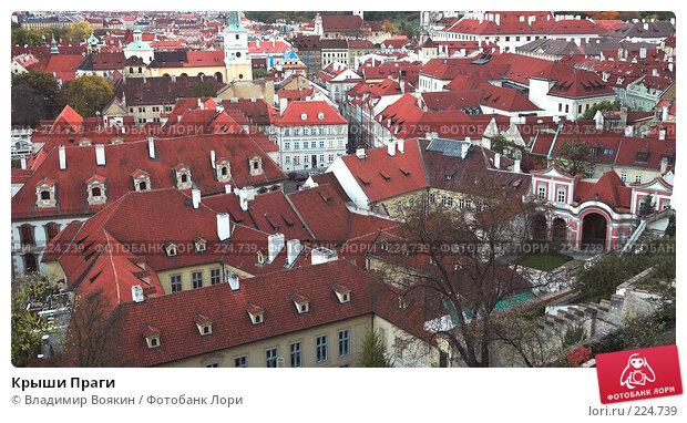 Крыши Праги, фото № 224739, снято 24 октября 2006 г. (c) Владимир Воякин / Фотобанк Лори