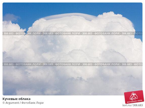 Кучевые облака, фото № 308683, снято 30 апреля 2008 г. (c) Argument / Фотобанк Лори