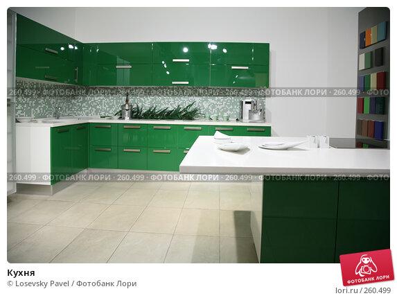 Кухня, фото № 260499, снято 26 февраля 2017 г. (c) Losevsky Pavel / Фотобанк Лори