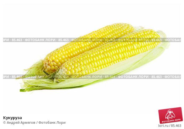 Купить «Кукуруза», фото № 85463, снято 20 апреля 2018 г. (c) Андрей Армягов / Фотобанк Лори