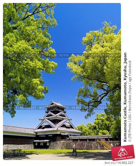 Купить «Kumamoto Castle, Kumamoto, Kyushu, Japan», фото № 14902227, снято 20 июня 2018 г. (c) age Fotostock / Фотобанк Лори