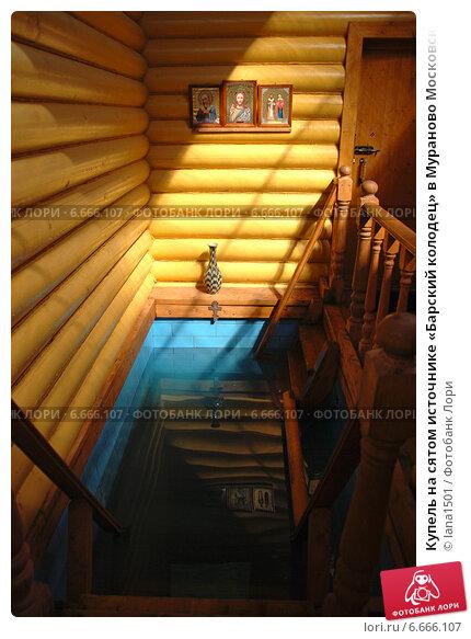 Купить «Купель на сятом источнике «Барский колодец» в Мураново Московской области», эксклюзивное фото № 6666107, снято 6 июня 2011 г. (c) lana1501 / Фотобанк Лори