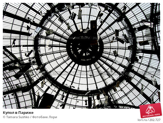 Купол в Париже, фото № 202727, снято 25 декабря 2007 г. (c) Tamara Sushko / Фотобанк Лори