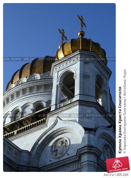 Купола Храма Христа Спасителя, фото № 205243, снято 18 января 2008 г. (c) Карасева Екатерина Олеговна / Фотобанк Лори