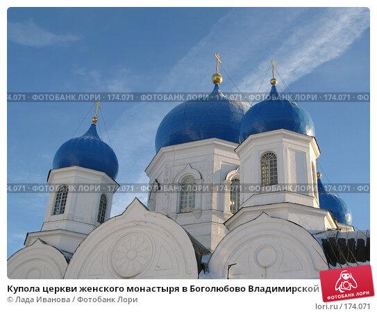 Купола церкви женского монастыря в Боголюбово Владимирской области, фото № 174071, снято 3 января 2008 г. (c) Лада Иванова / Фотобанк Лори