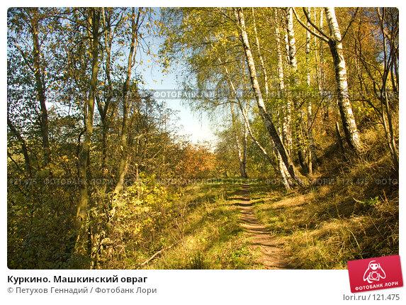 Куркино. Машкинский овраг, фото № 121475, снято 22 сентября 2007 г. (c) Петухов Геннадий / Фотобанк Лори