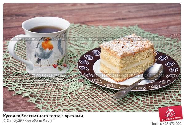 Купить «Кусочек бисквитного торта с орехами», эксклюзивное фото № 28072099, снято 24 февраля 2018 г. (c) Dmitry29 / Фотобанк Лори