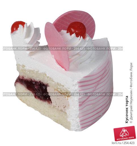 Купить «Кусочек торта», эксклюзивное фото № 254423, снято 8 июня 2006 г. (c) Дмитрий Неумоин / Фотобанк Лори