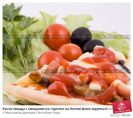 Купить «Кусок пиццы с овощами на тарелке на белом фоне (крупный план)», фото № 188987, снято 27 января 2008 г. (c) Мельников Дмитрий / Фотобанк Лори
